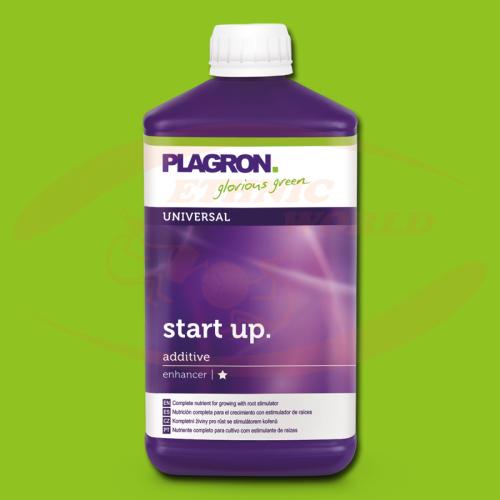 Plagron Start Up