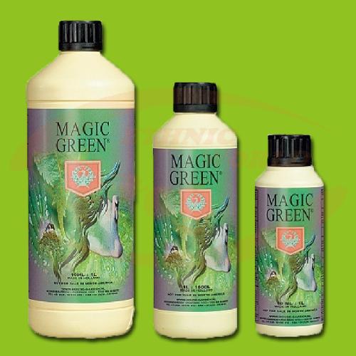 H&G Magic Green
