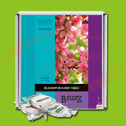 Bcuzz Blossom Builder TABZZ