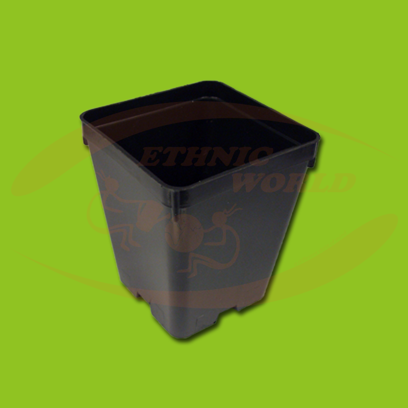 Square Pot 1 lt