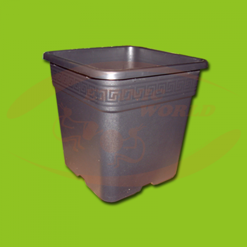 Square Pot 2 lt