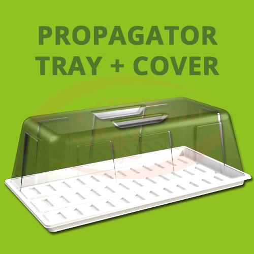 SJ - Propagator COVER