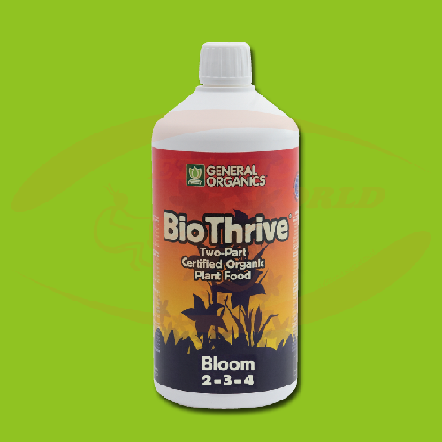 GO - BioThrive Bloom