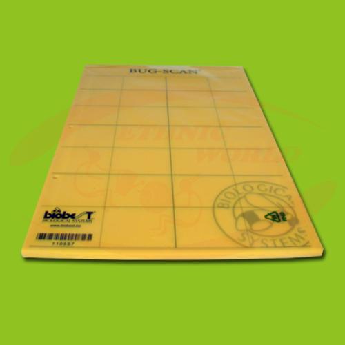 Bug-Scan Yellow (25x40cm)