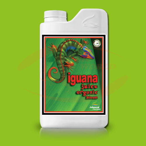 AN Iguana Juice Organic OIM Bloom
