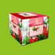 Al Fakher Iced Raspberry Mint