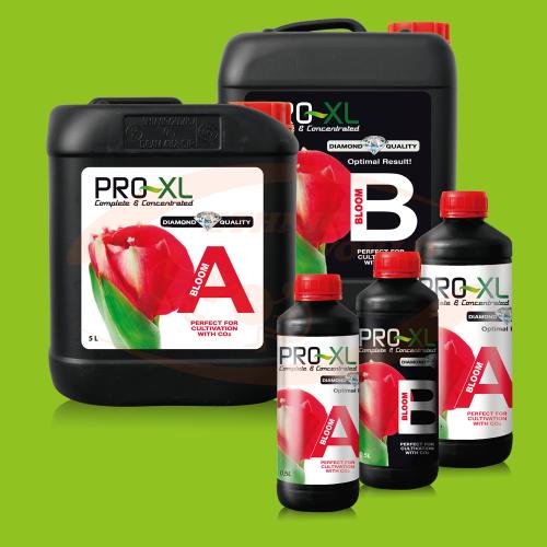 PRO-XL Bloom A+B