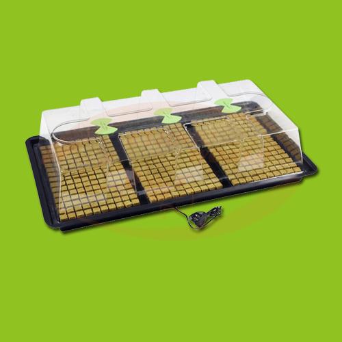 X-Stream Heat Large (Nutriculture)
