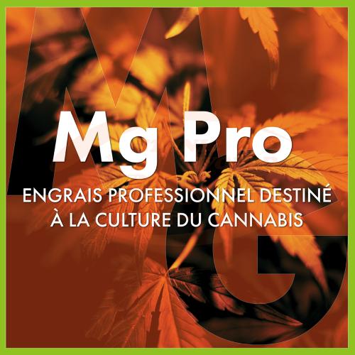 TheAzimut Mg Pro