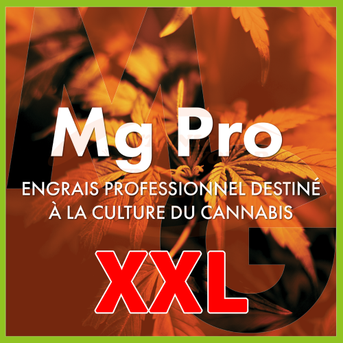 TheAzimut Mg Pro - XXL