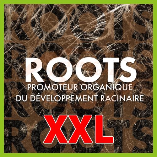 TheAzimut ROOTS - XXL