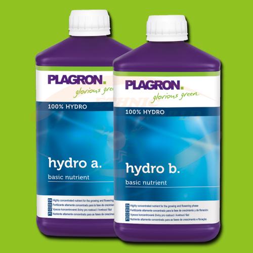 Plagron Hydro A+B