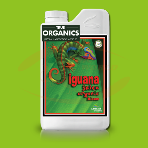 AN Iguana Juice Bloom TRUE ORGANICS
