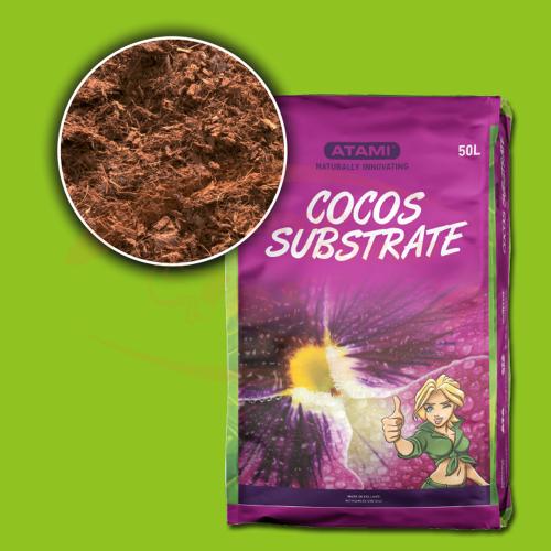 Bcuzz Coco