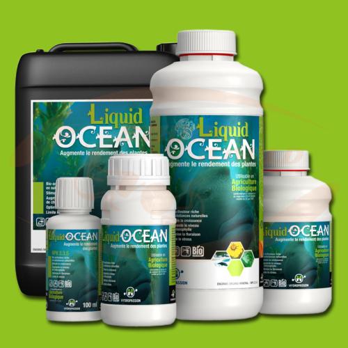 HP Liquid Ocean