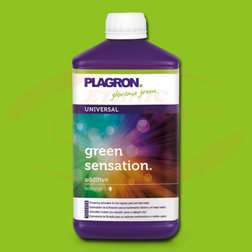Plagron Green Sensation