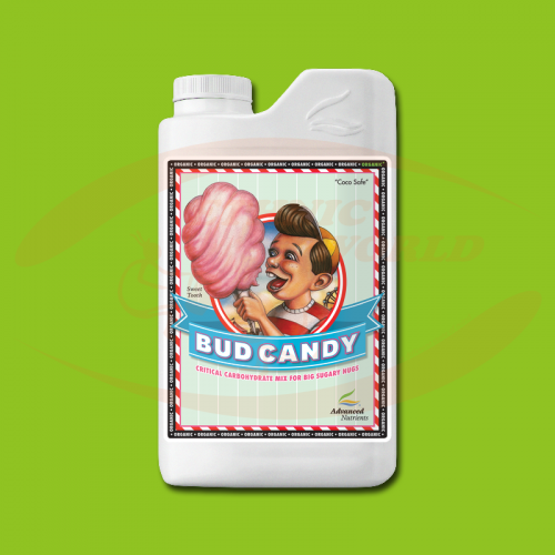 AN Bud Candy