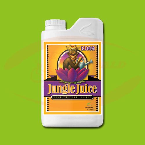 AN Jungle Juice Bloom